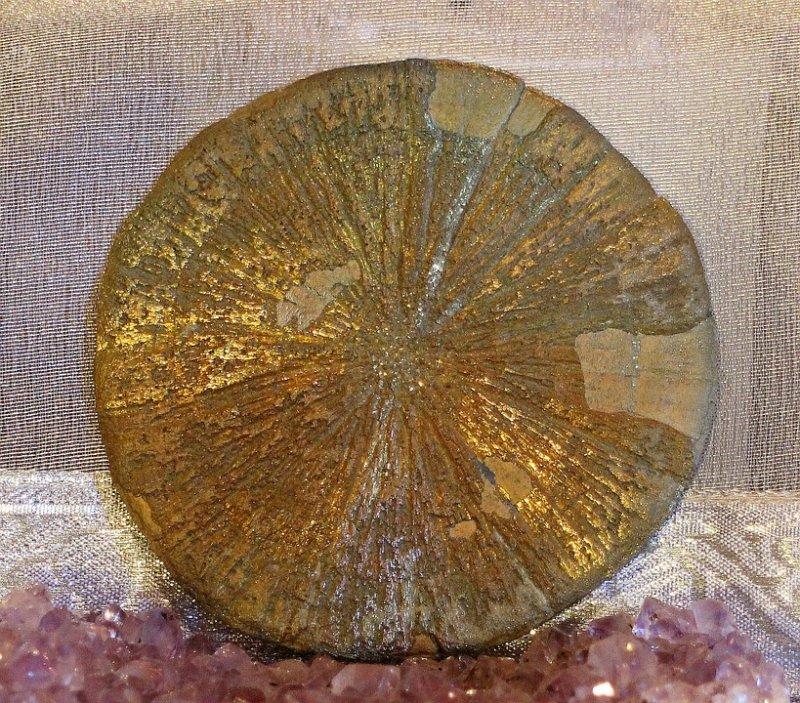 złota aranżacja, złoty designe, złote wnętrze, złote dodatki